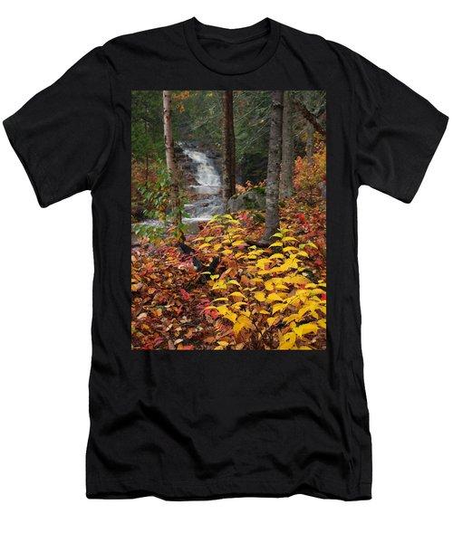 Cascade Creek  Autumn Men's T-Shirt (Athletic Fit)