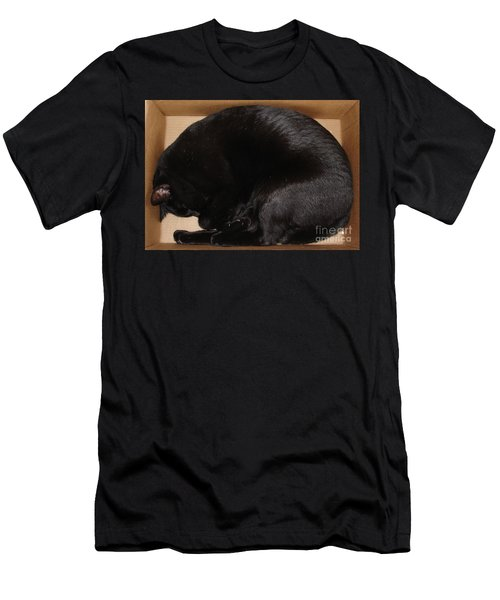 Men's T-Shirt (Slim Fit) featuring the photograph Cat In The Box by Kerri Mortenson