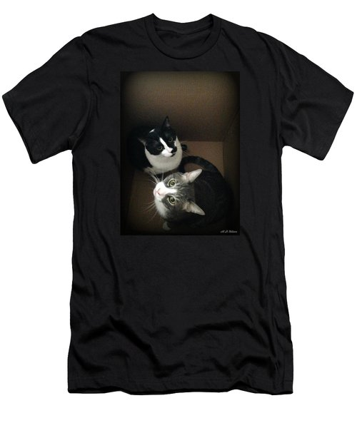 Cats In The Box Men's T-Shirt (Athletic Fit)