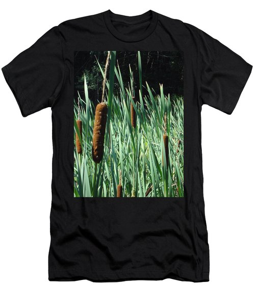 Cattails A Plenty Men's T-Shirt (Slim Fit) by Michael Porchik