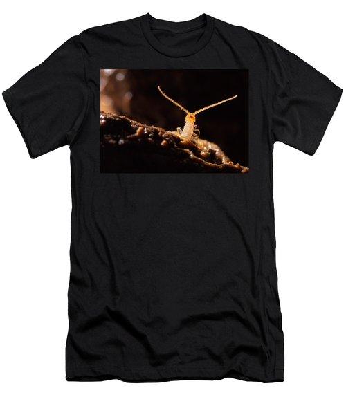 Cave Centipede Men's T-Shirt (Athletic Fit)
