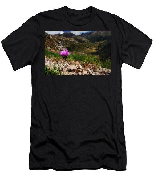 Centaurea Men's T-Shirt (Athletic Fit)