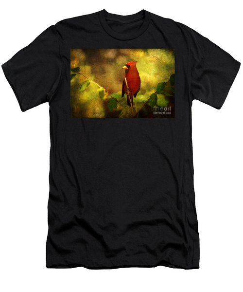 Cheery Red Cardinal  Men's T-Shirt (Athletic Fit)