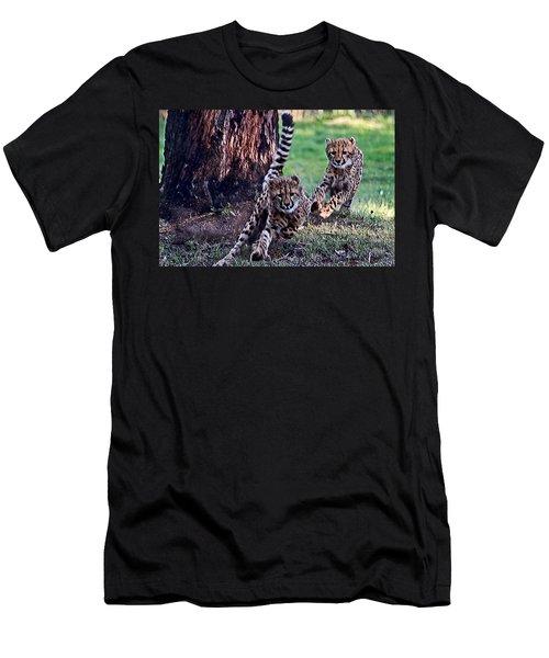 Cheetah Cubs Men's T-Shirt (Athletic Fit)