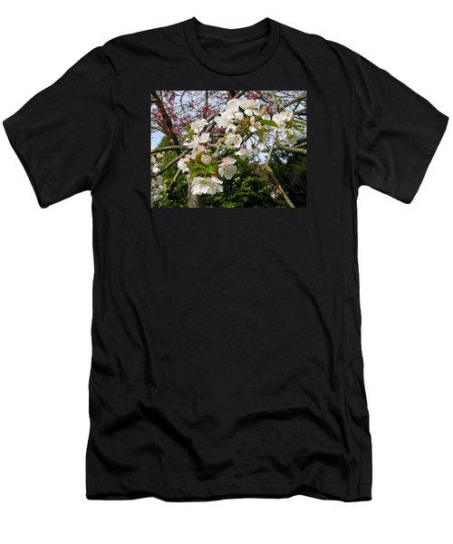 Cherry Blossom In The Spring Men's T-Shirt (Athletic Fit)