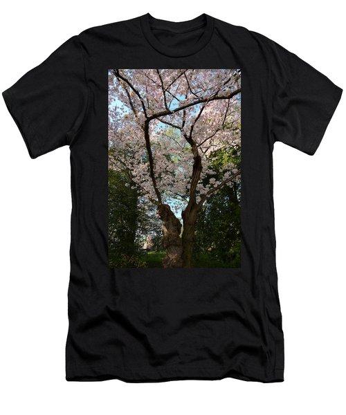 Cherry Blossoms 2013 - 056 Men's T-Shirt (Athletic Fit)