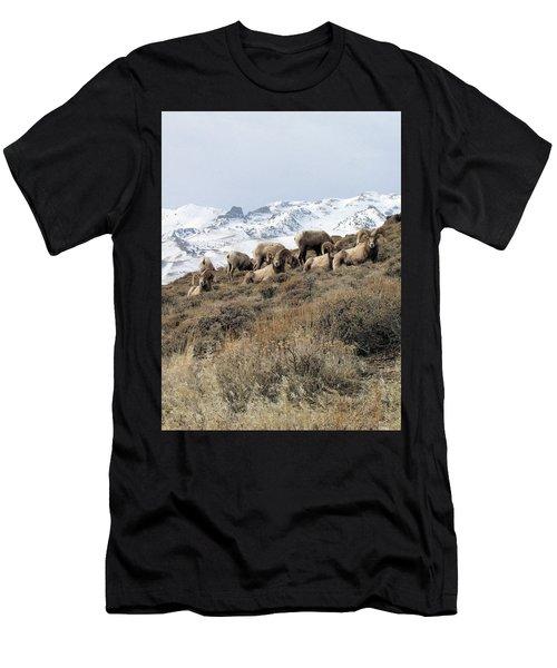 Chimney Rock Rams Men's T-Shirt (Athletic Fit)