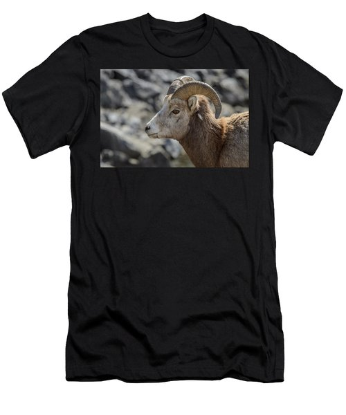 Close Big Horn Sheep  Men's T-Shirt (Athletic Fit)