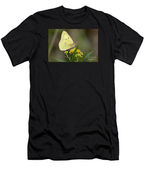 Clouded Sulphur Men's T-Shirt (Athletic Fit)