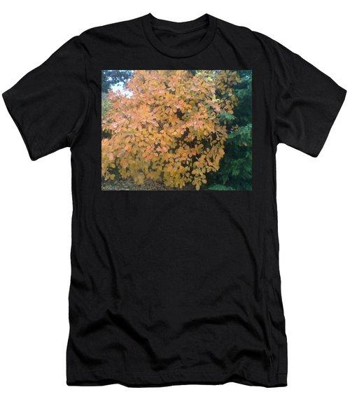 Color Surprise Men's T-Shirt (Athletic Fit)