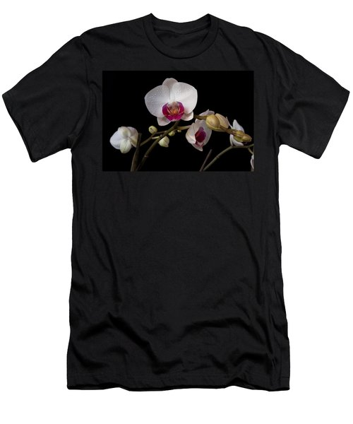 Colorful Moth Orchid Men's T-Shirt (Slim Fit) by Ron White