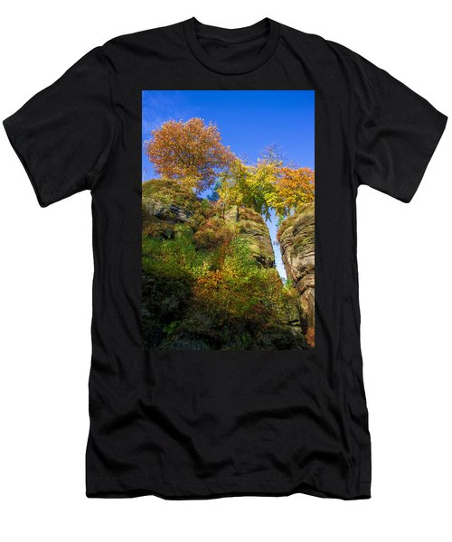 Colorful Trees In The Elbe Sandstone Mountains Men's T-Shirt (Athletic Fit)