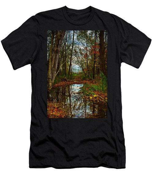 Colors Of Fall Men's T-Shirt (Athletic Fit)