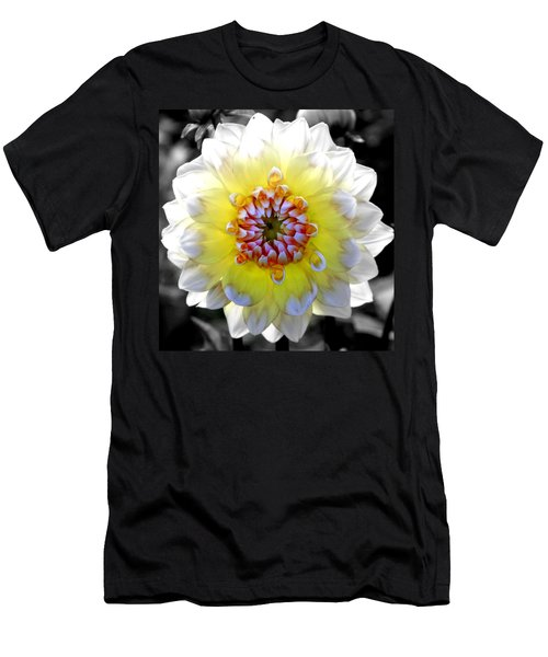 Colorwheel Men's T-Shirt (Slim Fit) by Karen Wiles