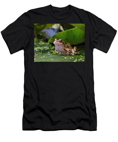 Common Frog Men's T-Shirt (Athletic Fit)