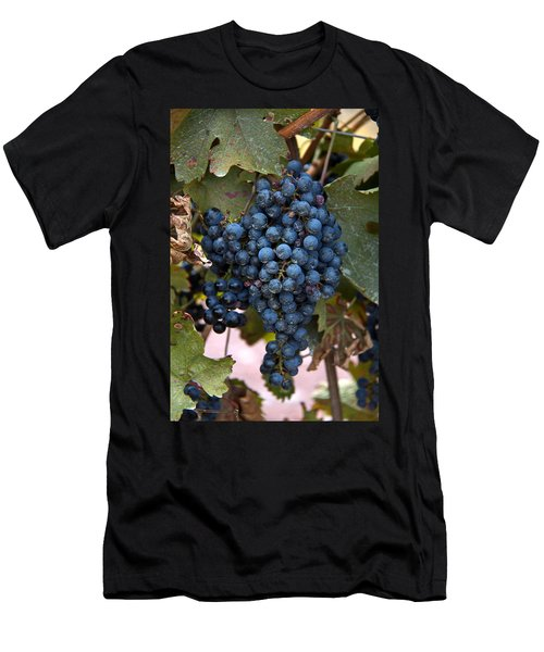 Concord Grapes Men's T-Shirt (Athletic Fit)