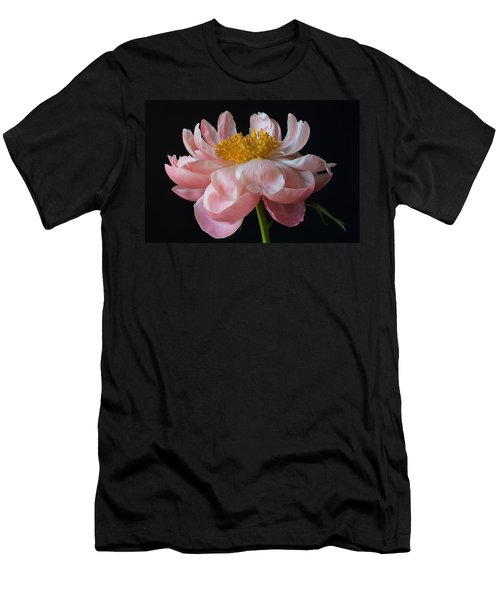 Coral Peony Men's T-Shirt (Athletic Fit)