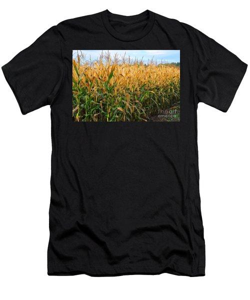 Corn Harvest Men's T-Shirt (Slim Fit) by Terri Gostola