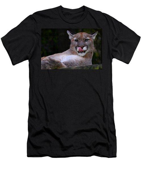 Cougar Town Men's T-Shirt (Athletic Fit)