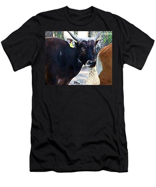 Court Out Men's T-Shirt (Athletic Fit)