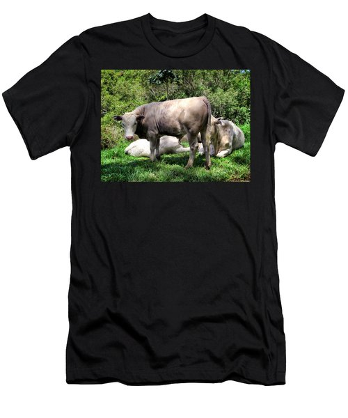 Men's T-Shirt (Slim Fit) featuring the photograph Cow 5 by Dawn Eshelman