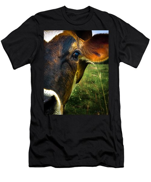 Cow Eating Grass Men's T-Shirt (Slim Fit) by Bob Orsillo