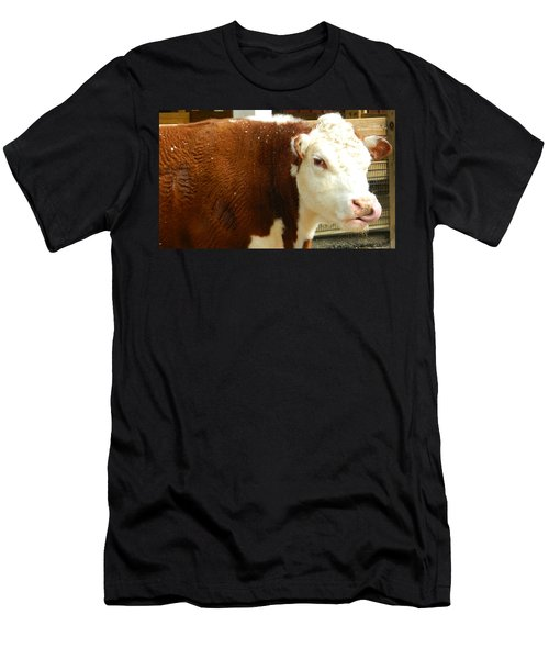 Cow Lickin' Good Men's T-Shirt (Athletic Fit)