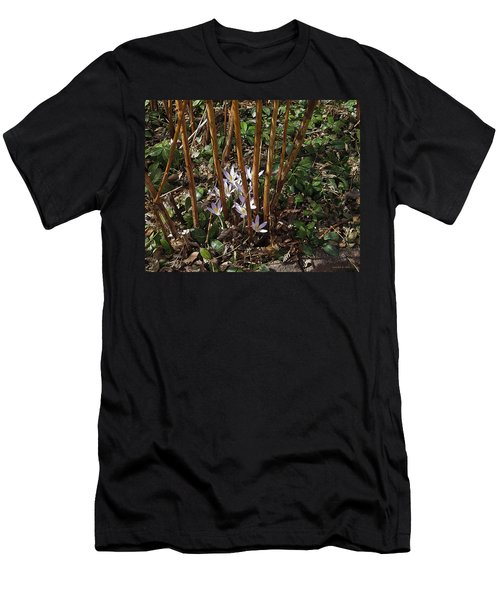 Crocuses And Raspberry Canes Men's T-Shirt (Athletic Fit)
