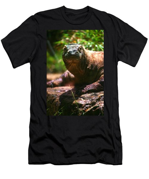 Curious Komodo Men's T-Shirt (Athletic Fit)