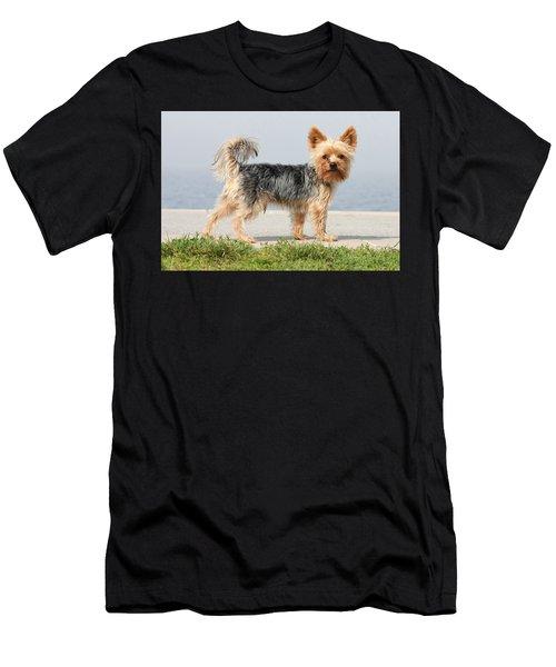 Cut Little Dog In The Sun Men's T-Shirt (Athletic Fit)