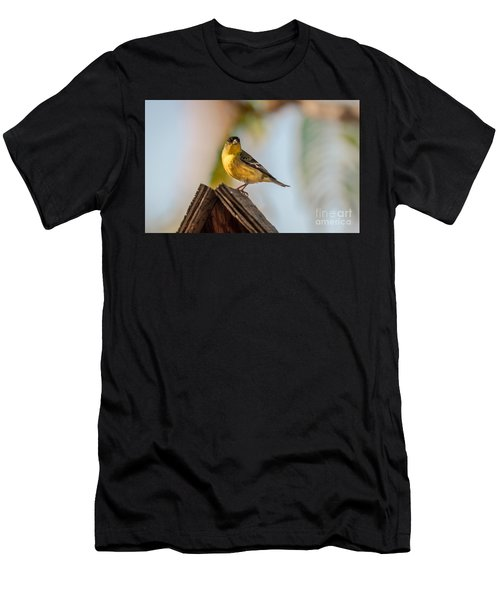 Cute Finch Men's T-Shirt (Athletic Fit)