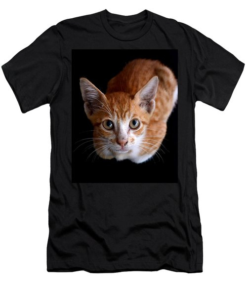 Cute Kitten Men's T-Shirt (Athletic Fit)