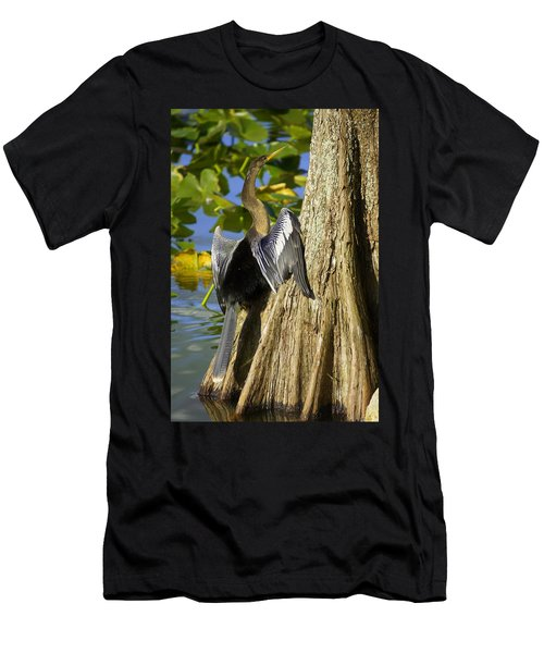 Cypress Bird Men's T-Shirt (Slim Fit) by Laurie Perry