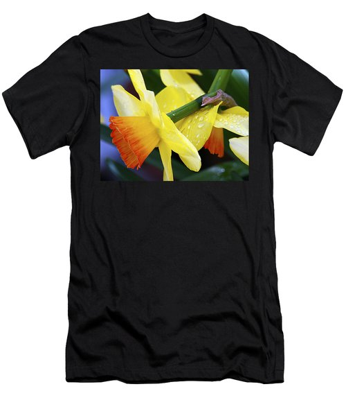 Men's T-Shirt (Slim Fit) featuring the photograph Daffodils With Rain by Joe Schofield