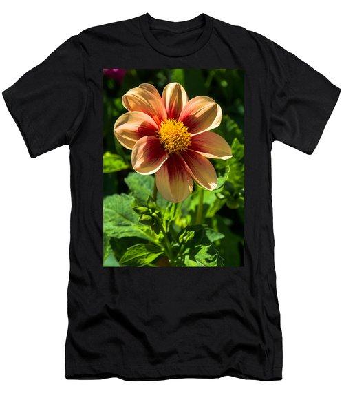 Dahlia 4 Men's T-Shirt (Athletic Fit)