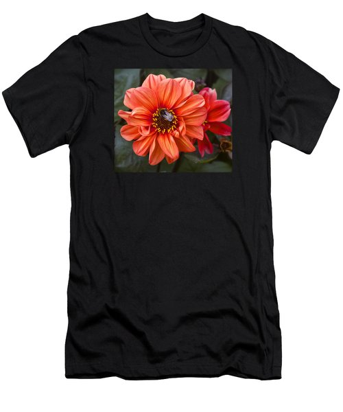 Dahlia With Bee Men's T-Shirt (Slim Fit) by Venetia Featherstone-Witty
