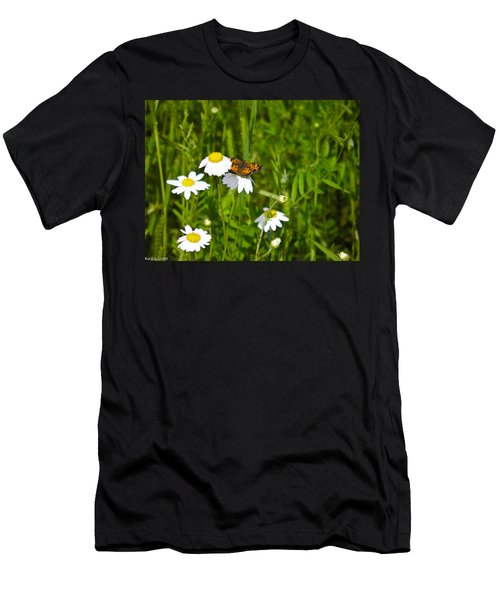 Daisey And Butterfly Men's T-Shirt (Athletic Fit)