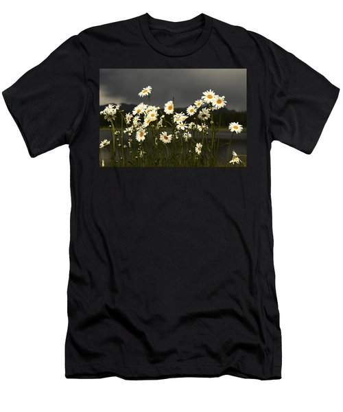 Daisies In Storm Light Men's T-Shirt (Athletic Fit)