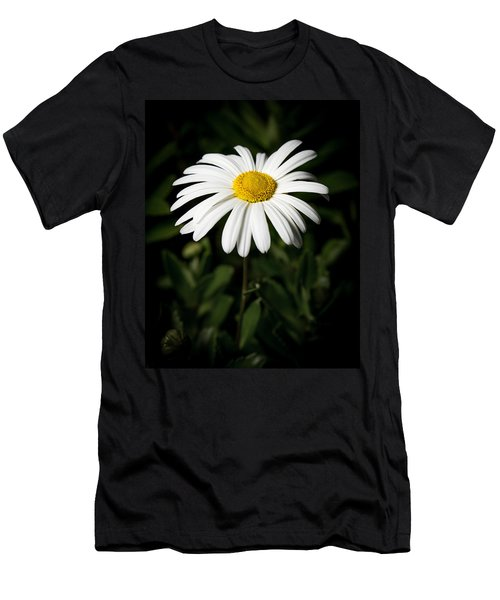 Daisy In The Garden Men's T-Shirt (Athletic Fit)