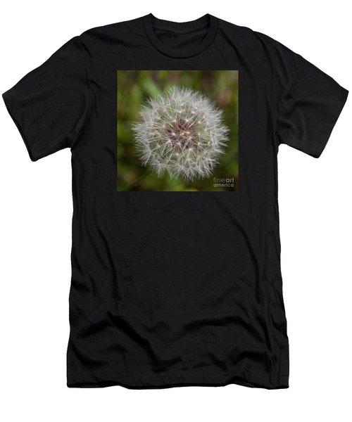 Dandelion Clock Men's T-Shirt (Athletic Fit)