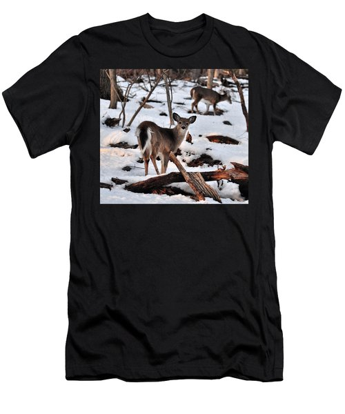 Deer And Snow Men's T-Shirt (Athletic Fit)