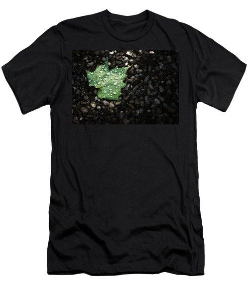 Dew On Leaf Men's T-Shirt (Athletic Fit)