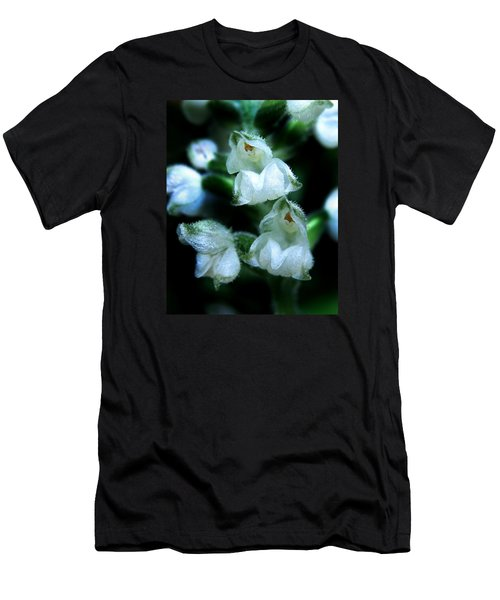 Downy Rattlesnake Plantain Orchid Men's T-Shirt (Slim Fit) by William Tanneberger