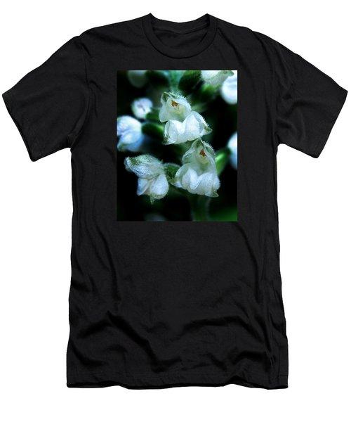 Downy Rattlesnake Plantain Orchid Men's T-Shirt (Slim Fit)