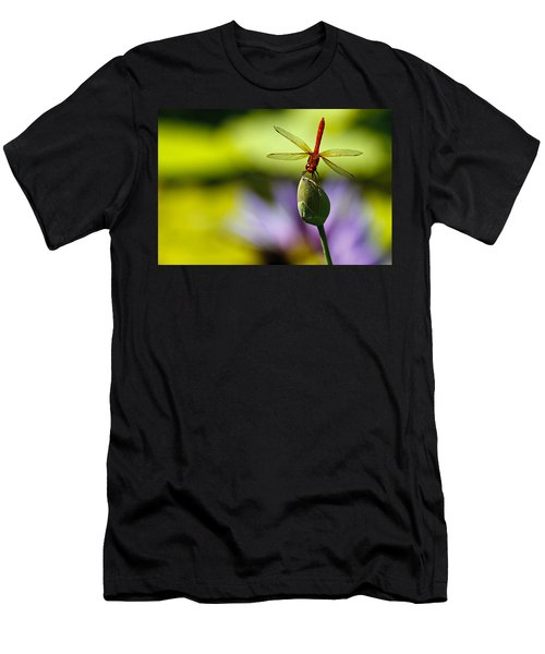 Dragonfly Display Men's T-Shirt (Athletic Fit)