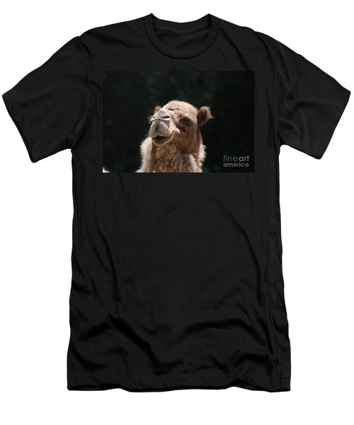 Dromedary Camel Face Men's T-Shirt (Slim Fit) by DejaVu Designs