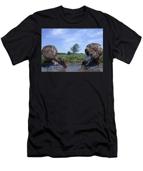 Ducks Eye View Men's T-Shirt (Athletic Fit)