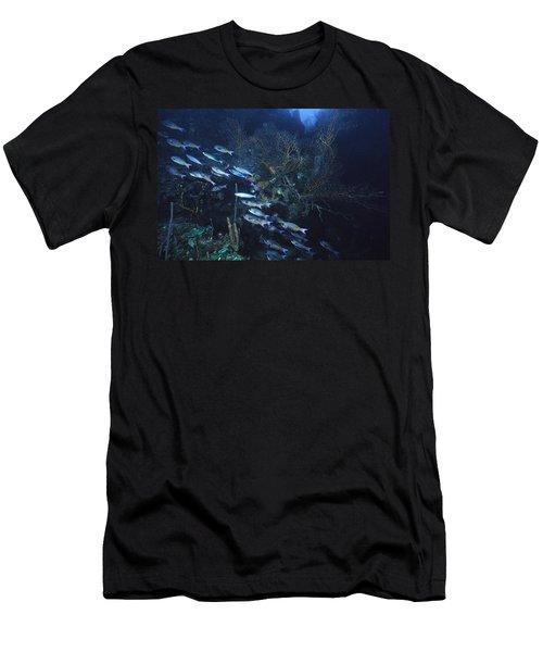 Dusk Over The Ledge Men's T-Shirt (Athletic Fit)