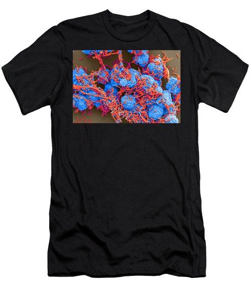 E Coli And Macrophages Sem Men's T-Shirt (Athletic Fit)