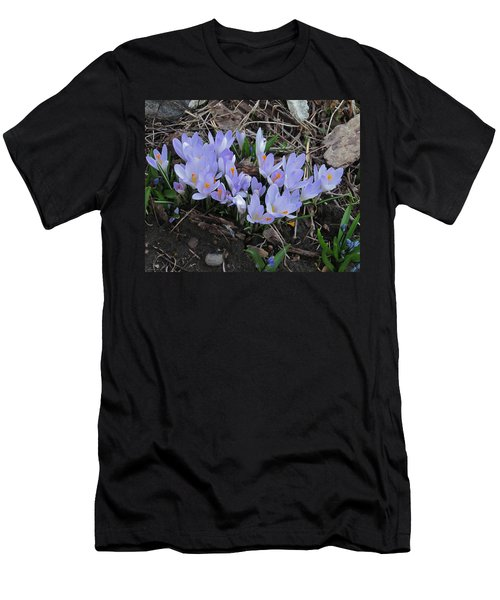 Early Crocuses Men's T-Shirt (Slim Fit) by Donald S Hall